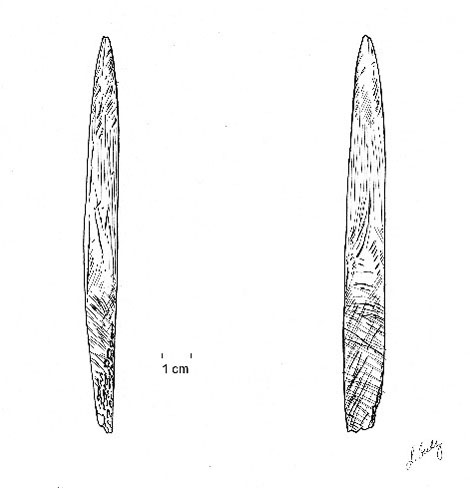 Figure 2. Lateral and ventral views of single-beveled bone point recovered from Sheriden Cave in 1995 (Drawing by Luba Gudz