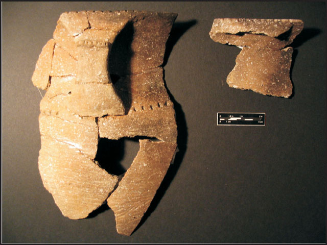 Figure 4: Partially reconstructed portion of a Madisonville Grooved Paddle jar recovered from Feature 04-19a.