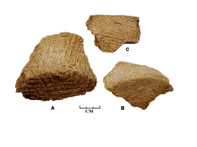 Figure 3: Selected sherds of Leimbach Thick pottery from Feature 04-13; A and B, base sherds; C, rim sherd.